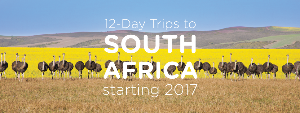 Announcing SOUTH AFRICA!