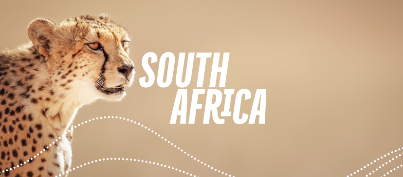 Unforgettable South Africa