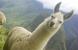 8 Days in Peru